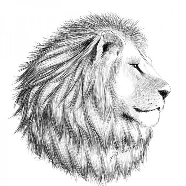獅頭數位鉛筆素描